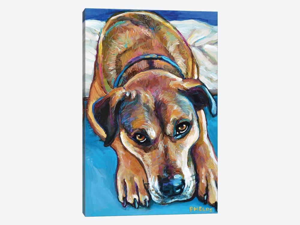Sienna the Mastiff Mix by Robert Phelps 1-piece Canvas Art
