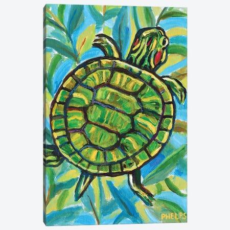 Slider Turtle Canvas Print #RPH109} by Robert Phelps Canvas Print