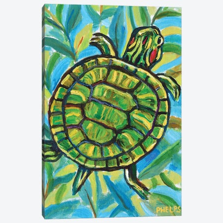 Slider Turtle Canvas Print #RPH109} by Robert Phelps Canvas Print