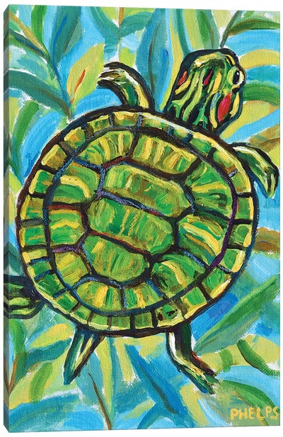 Slider Turtle Canvas Art Print