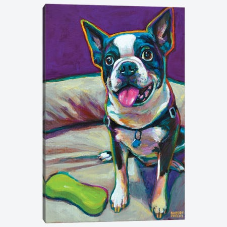Boston Terrier And Toy Canvas Print #RPH10} by Robert Phelps Canvas Art Print