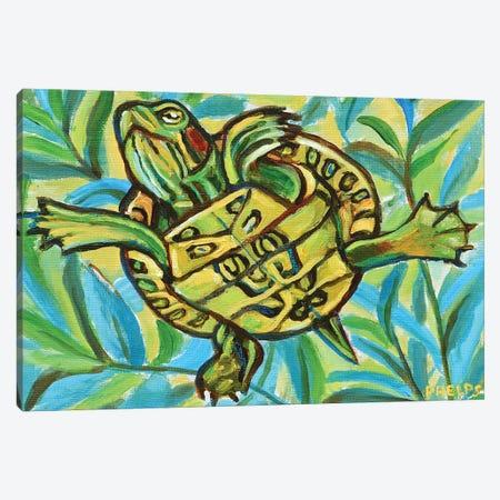 Slider Turtle Swimming Canvas Print #RPH110} by Robert Phelps Canvas Artwork