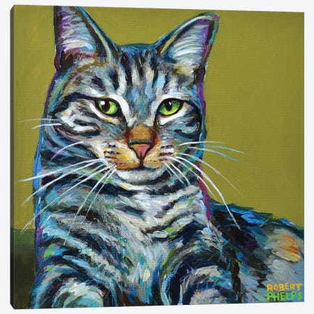 Striped Tabby on Green Canvas Print #RPH113} by Robert Phelps Canvas Wall Art