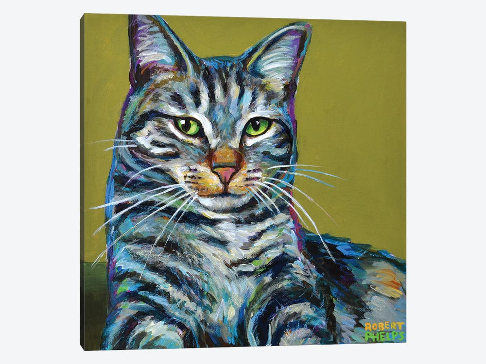 Striped Tabby on Green by Robert Phelps 1-piece Canvas Print
