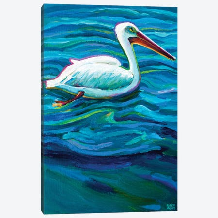 Swimming Pelican Canvas Print #RPH114} by Robert Phelps Canvas Print