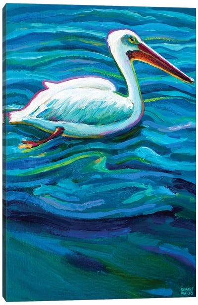 Swimming Pelican Canvas Art Print