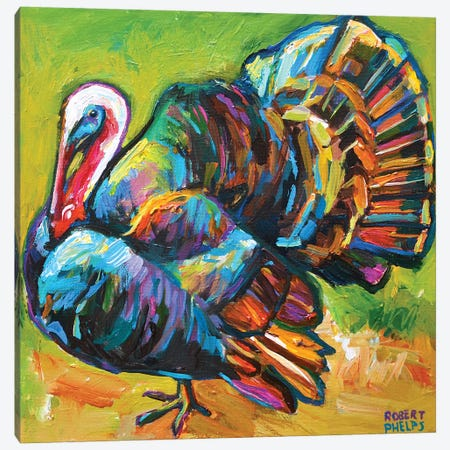 Turkey Canvas Print #RPH115} by Robert Phelps Canvas Print