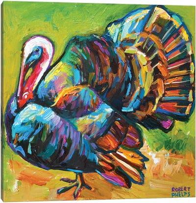 Turkey Canvas Art Print