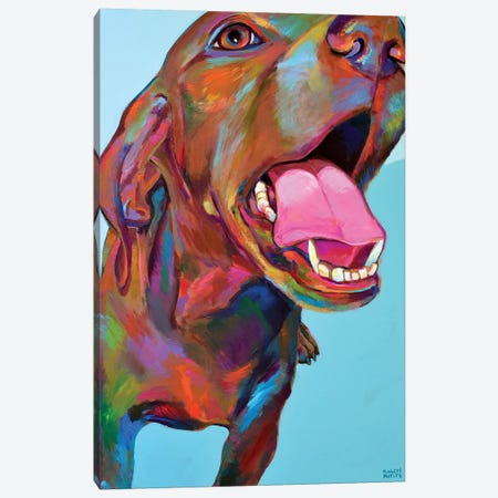 Vizsla Canvas Print #RPH116} by Robert Phelps Art Print