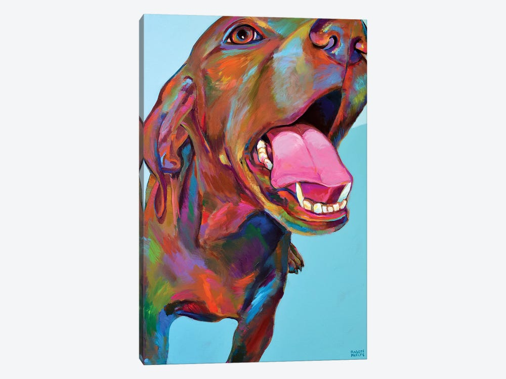 Vizsla by Robert Phelps 1-piece Canvas Wall Art