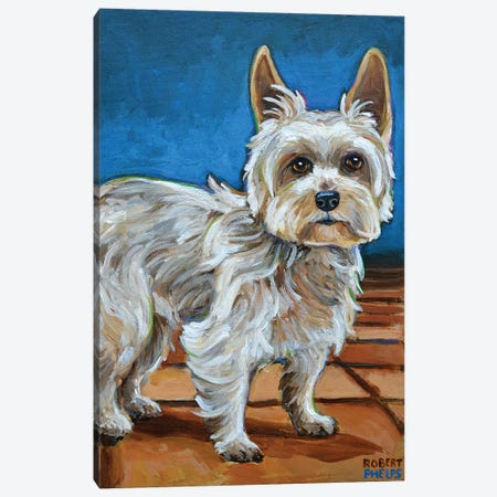 Yorkie Canvas Print #RPH119} by Robert Phelps Canvas Artwork