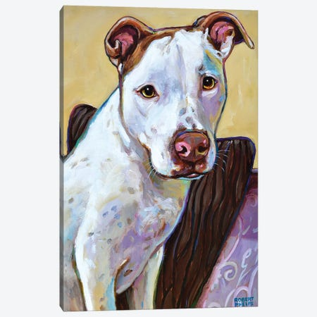 Ziggy Canvas Print #RPH120} by Robert Phelps Canvas Print