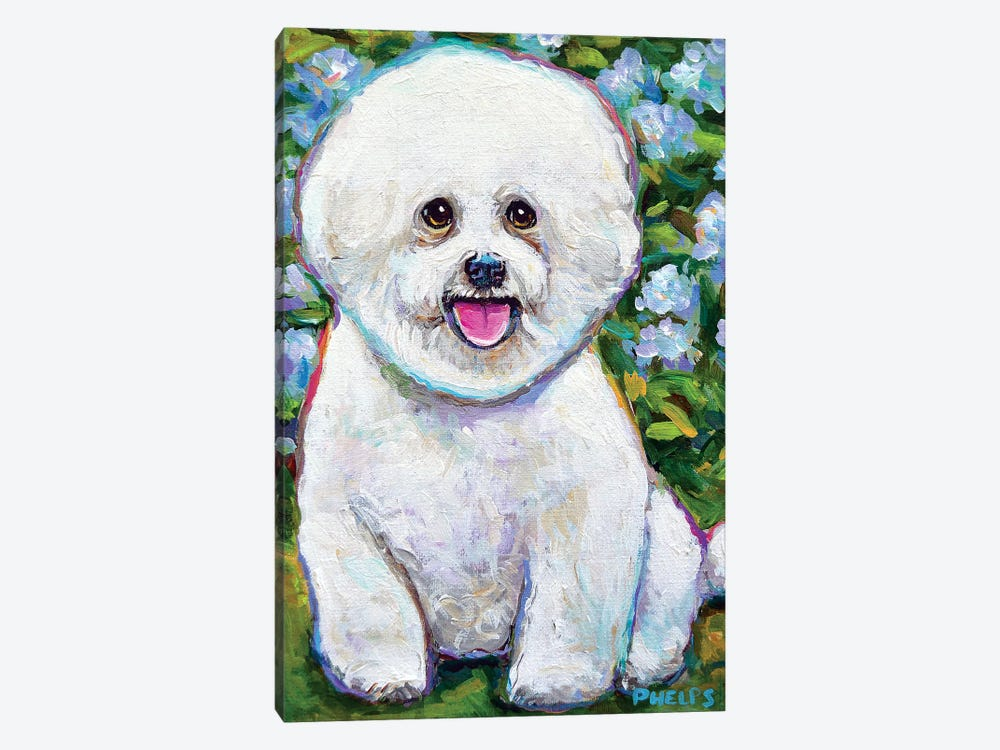 Bichon Frise And Blossoms by Robert Phelps 1-piece Canvas Artwork
