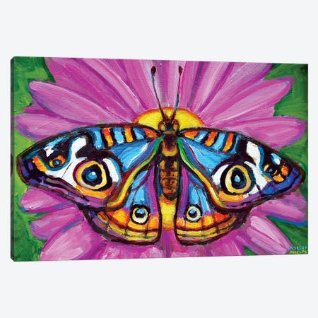 Butterfly And Flower Canvas Print #RPH125} by Robert Phelps Canvas Artwork
