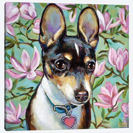 Chihuahua And Magnolia Blossoms Canvas Print #RPH127} by Robert Phelps Canvas Artwork