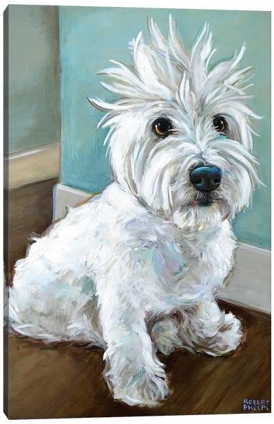 Dude The Westie Canvas Art Print