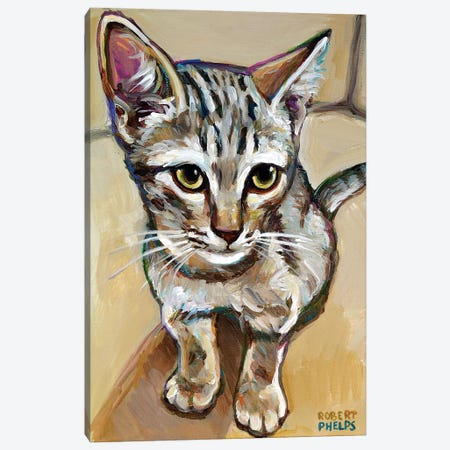 Leaf The Kitten Canvas Print #RPH132} by Robert Phelps Canvas Wall Art