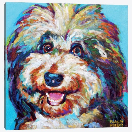 Olivia The Aussie Doodle Canvas Print #RPH134} by Robert Phelps Art Print