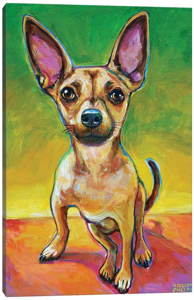 Ollie The Chihuahua Canvas Art Print