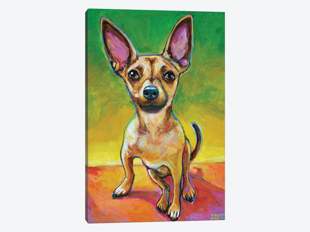 Ollie The Chihuahua by Robert Phelps 1-piece Canvas Wall Art