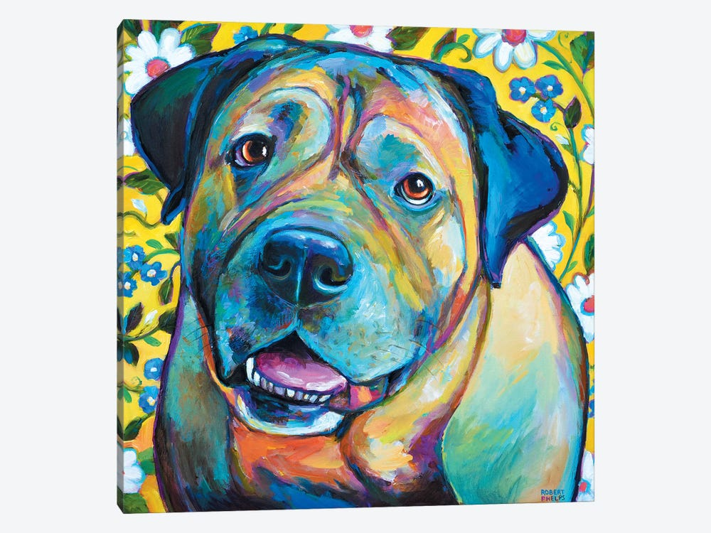 Bull Mastiff by Robert Phelps 1-piece Canvas Wall Art