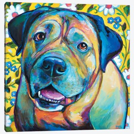 Bull Mastiff Canvas Print #RPH13} by Robert Phelps Art Print