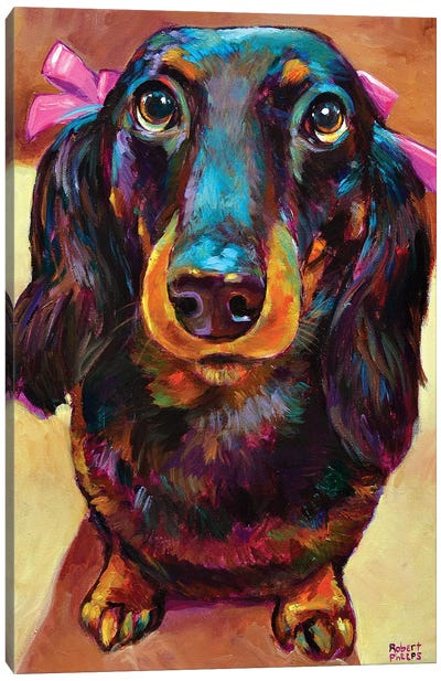 Roxy The Dachshund Canvas Art Print