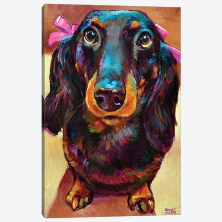 Roxy The Dachshund Canvas Print #RPH140} by Robert Phelps Art Print