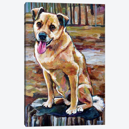 Shiba Inu Mix In The Woods Canvas Print #RPH142} by Robert Phelps Art Print