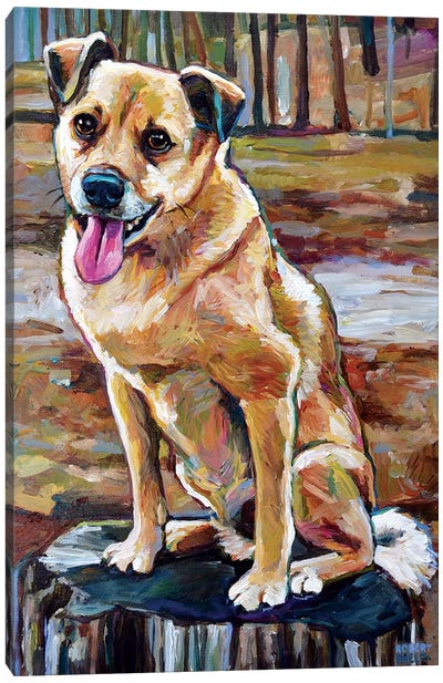 Shiba Inu Mix In The Woods Canvas Art Print