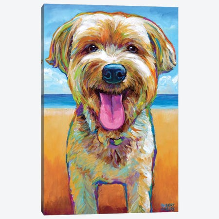 Yorkie On The Beach Canvas Print #RPH144} by Robert Phelps Canvas Wall Art
