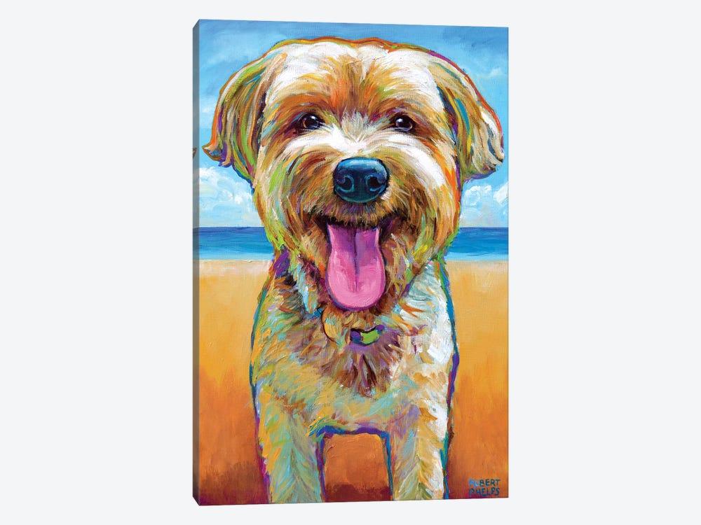 Yorkie On The Beach by Robert Phelps 1-piece Art Print