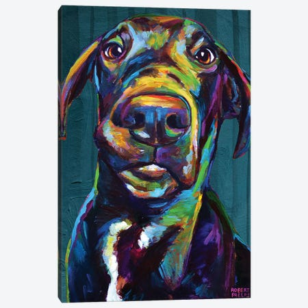 Great Dane On Blue Canvas Print #RPH146} by Robert Phelps Canvas Wall Art