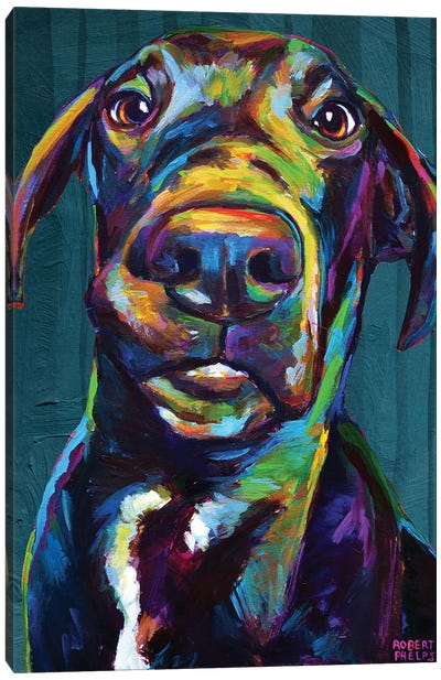 Great Dane On Blue Canvas Art Print