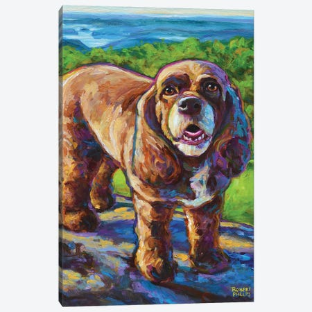 Mountain Spaniel 3-Piece Canvas #RPH148} by Robert Phelps Canvas Print