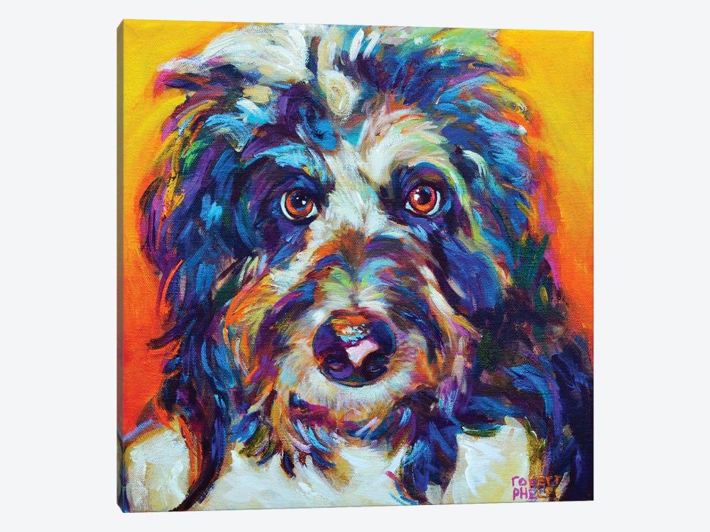 Mr Aussiedoodle by Robert Phelps 1-piece Canvas Art