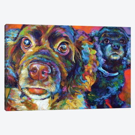Spaniel Brothers Canvas Print #RPH150} by Robert Phelps Canvas Art