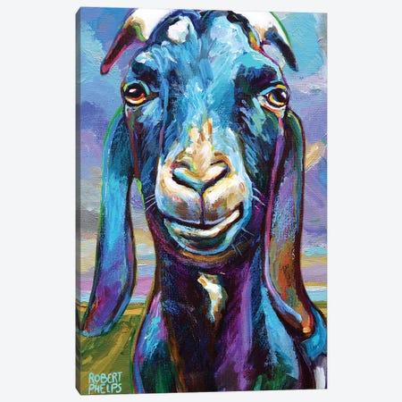 Lucian At Dawn Canvas Print #RPH161} by Robert Phelps Canvas Art Print