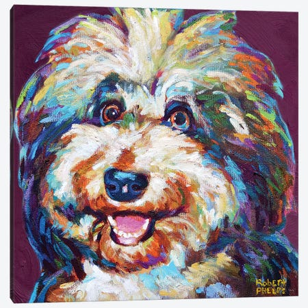 Ms Aussiedoodle On Violet Canvas Print #RPH163} by Robert Phelps Canvas Art Print
