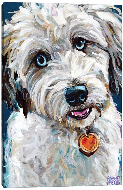 Aussiedoodle With Blue Eyes Canvas Art Print