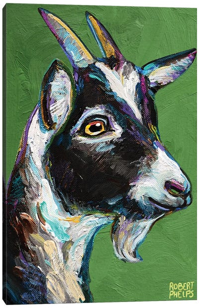 Baby Goat On Green Canvas Art Print