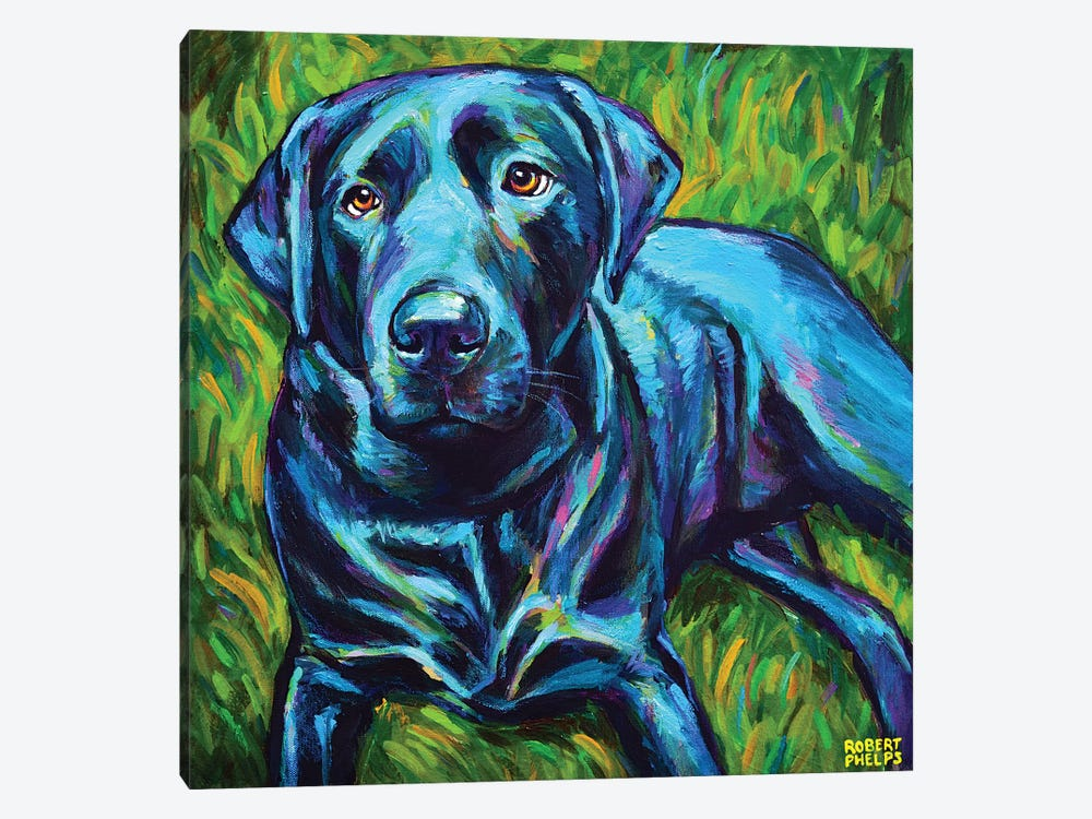 Black Lab On The Grass by Robert Phelps 1-piece Canvas Art
