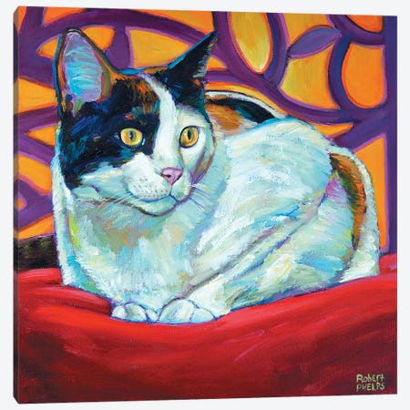 Calico Canvas Print #RPH16} by Robert Phelps Canvas Wall Art