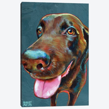 Chocolate Labrador On Blue Canvas Print #RPH171} by Robert Phelps Canvas Wall Art