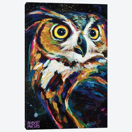 Night Owl Canvas Print #RPH177} by Robert Phelps Canvas Art Print