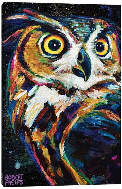 Night Owl Canvas Art Print
