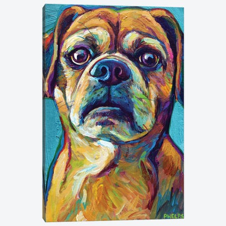 Puggle On Blue Canvas Print #RPH179} by Robert Phelps Canvas Artwork