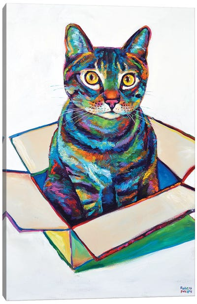 Cat In Box Canvas Art Print