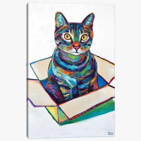 Cat In Box Canvas Print #RPH17} by Robert Phelps Canvas Artwork
