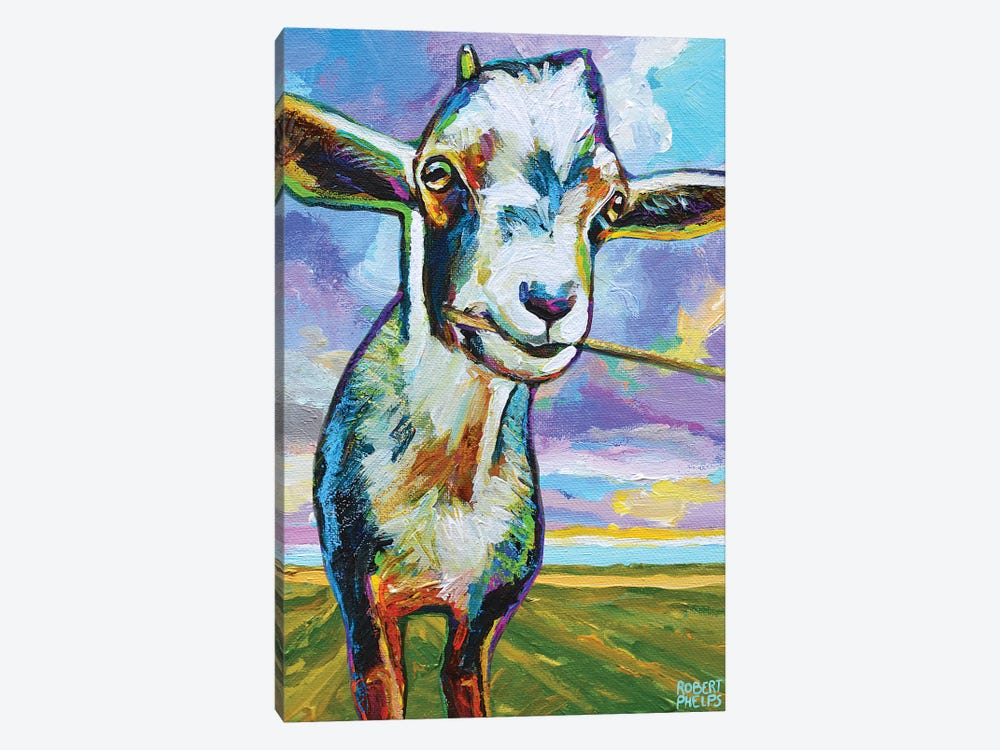 Theo The Goat In The Field by Robert Phelps 1-piece Art Print